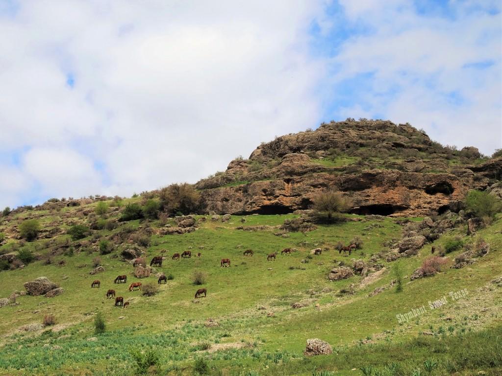 Grottes Mashat