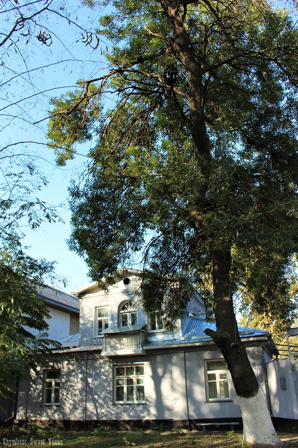 beket-batyr-shymkent_apercu
