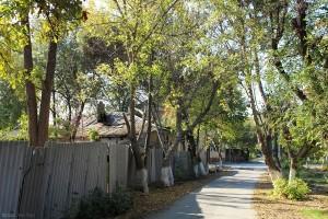 Beket Batyr Street