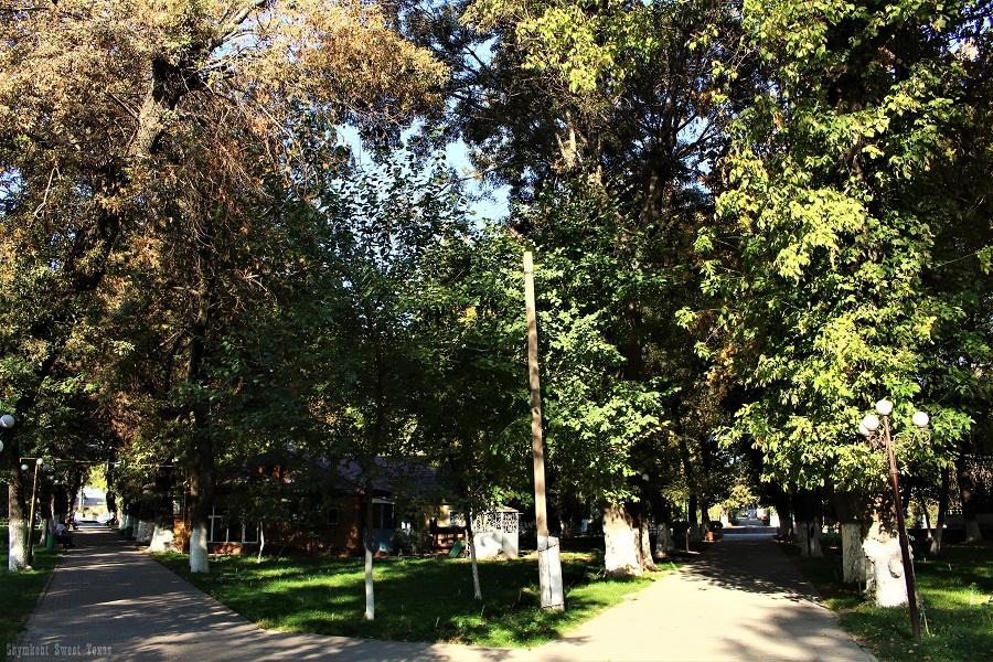 parc-victoire-shymkent_allees