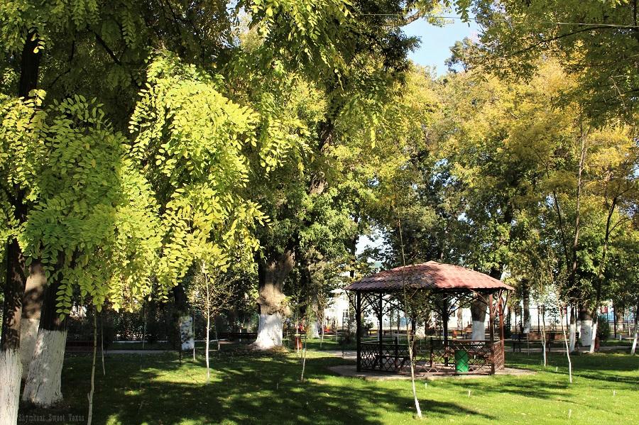 parc-victoire-shymkent_pergola-sous-acacias