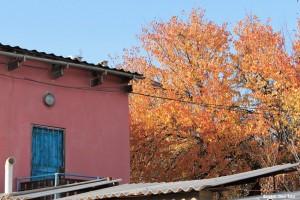 Fall in Shymkent
